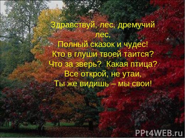 Здравствуй, лес, дремучий лес, Полный сказок и чудес! Кто в глуши твоей таится? Что за зверь? Какая птица? Все открой, не утаи, Ты же видишь – мы свои!