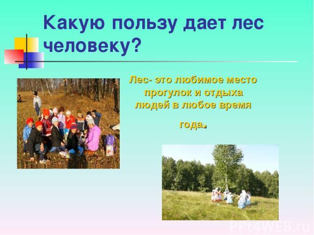 Какую пользу дает лес человеку? Лес- это любимое место прогулок и отдыха людей в любое время года.