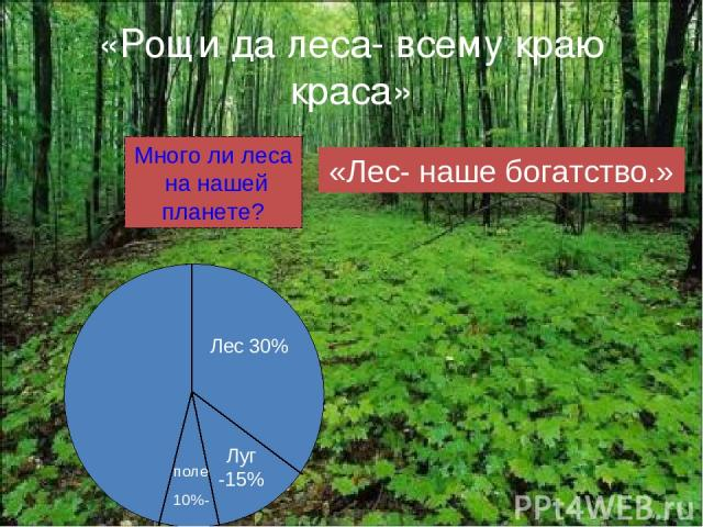 «Рощи да леса- всему краю краса» Много ли леса на нашей планете? Лес 30% Луг -15% поле 10%- «Лес- наше богатство.»