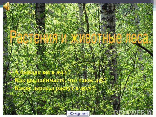 А бывали вы в лесу? Как вы понимаете, что такое лес? Какие деревья растут в лесу? 900igr.net