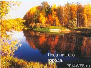 Лес –своеобразный, богатый и сложный мир, преданный, бескорыстный и постоянный с