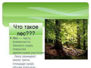 Лес— часть поверхностиЗемного шара, покрытаядревесными растениями. Леса заним