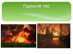 Горящий лес
