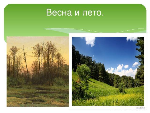 Весна и лето.