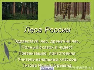 Леса России Здравствуй, лес, дремучий лес, Полный сказок и чудес! Презентацию пр