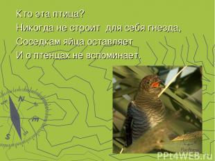 Кто эта птица? Никогда не строит для себя гнезда, Соседкам яйца оставляет И о пт