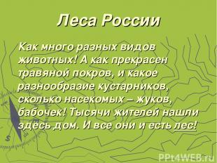 Леса России Как много разных видов животных! А как прекрасен травяной покров, и