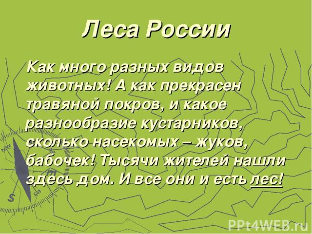 Леса России Как много разных видов животных! А как прекрасен травяной покров, и какое разнообразие кустарников, сколько насекомых – жуков, бабочек! Тысячи жителей нашли здесь дом. И все они и есть лес!