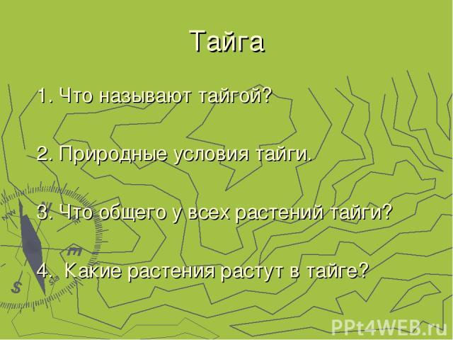 Тайга 1. Что называют тайгой? 2. Природные условия тайги. 3. Что общего у всех растений тайги? 4. Какие растения растут в тайге?