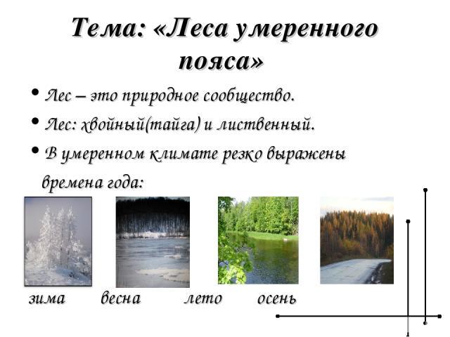 Тема: «Леса умеренного пояса» Лес – это природное сообщество. Лес: хвойный(тайга) и лиственный. В умеренном климате резко выражены времена года: зима весна лето осень