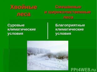 Хвойные леса Смешанные и широколиственные леса Суровые климатические условия Бла