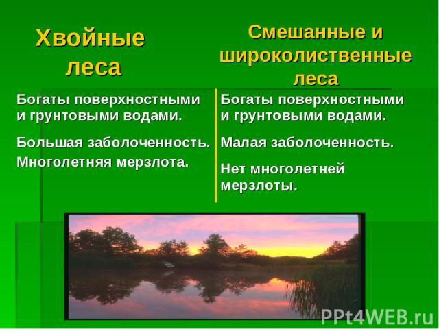 Хвойные леса Смешанные и широколиственные леса Богаты поверхностными и грунтовыми водами. Большая заболоченность. Многолетняя мерзлота. Богаты поверхностными и грунтовыми водами. Малая заболоченность. Нет многолетней мерзлоты.