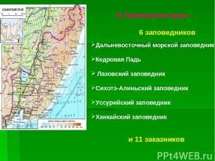 В Приморском крае – 6 заповедников Дальневосточный морской заповедник Кедровая П
