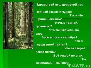 Здравствуй лес, дремучий лес Полный сказок и чудес! Ты о чём шумишь листвою Ночь
