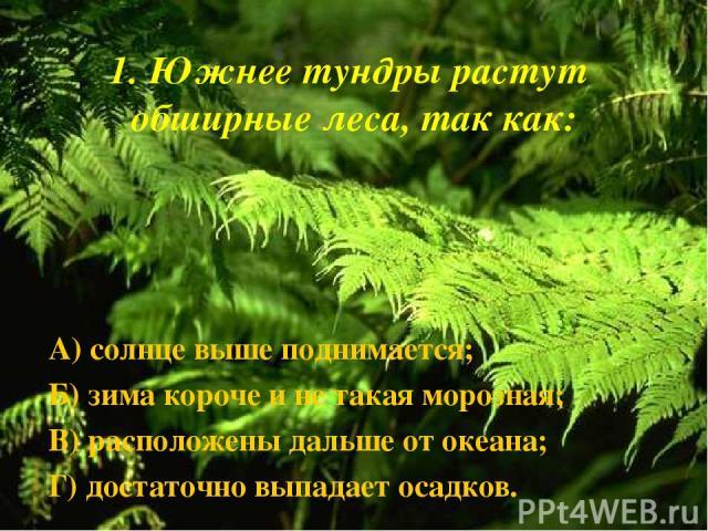 1. Южнее тундры растут обширные леса, так как: А) солнце выше поднимается; Б) зима короче и не такая морозная; В) расположены дальше от океана; Г) достаточно выпадает осадков.