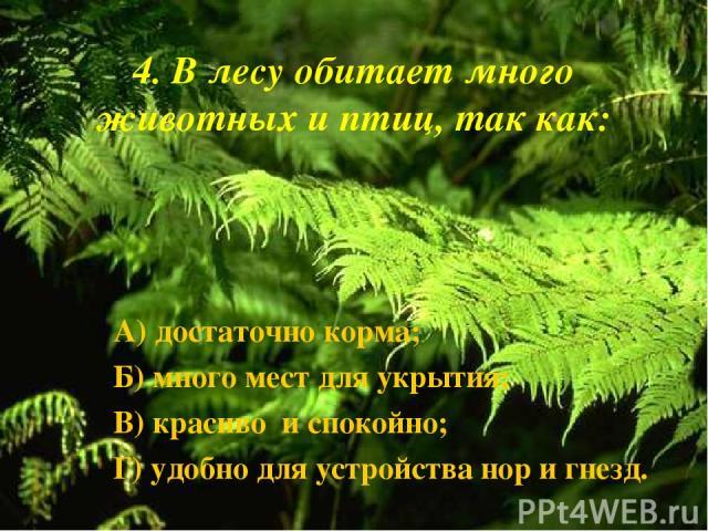 4. В лесу обитает много животных и птиц, так как: А) достаточно корма; Б) много мест для укрытия; В) красиво и спокойно; Г) удобно для устройства нор и гнезд.