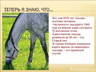 -Вот уже 6000 лет лошади - спутники человека. -Численность лошадей в 1990 году н