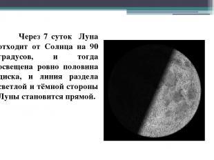 Через 7 суток Луна отходит от Солнца на 90 градусов, и тогда освещена ровно поло