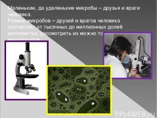 Маленькие, да удаленькие микробы – друзья и враги человека. Размер микробов – др
