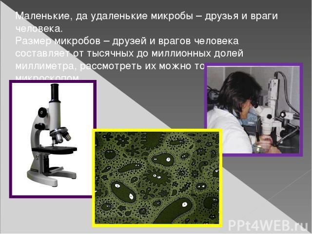 Маленькие, да удаленькие микробы – друзья и враги человека. Размер микробов – друзей и врагов человека составляет от тысячных до миллионных долей миллиметра, рассмотреть их можно только под микроскопом.