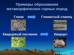 Примеры образования метаморфических горных пород Глина Глинистый сланец Кварцевы