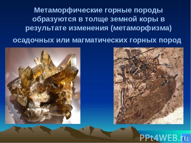 Метаморфические горные породы образуются в толще земной коры в результате изменения (метаморфизма) осадочных или магматических горных пород
