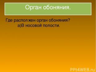 Орган обоняния. Где располжен орган обоняния? а)В носовой полости.