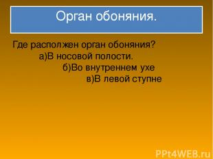 Орган обоняния. Где располжен орган обоняния? а)В носовой полости. б)Во внутренн