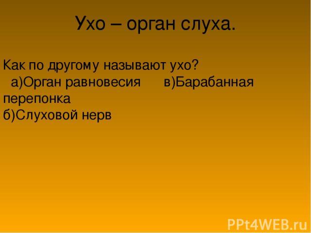 Ухо – орган слуха. Как по другому называют ухо? а)Орган равновесия в)Барабанная перепонка б)Слуховой нерв