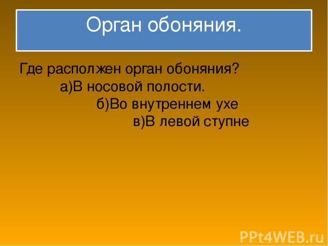 Орган обоняния. Где располжен орган обоняния? а)В носовой полости. б)Во внутреннем ухе в)В левой ступне