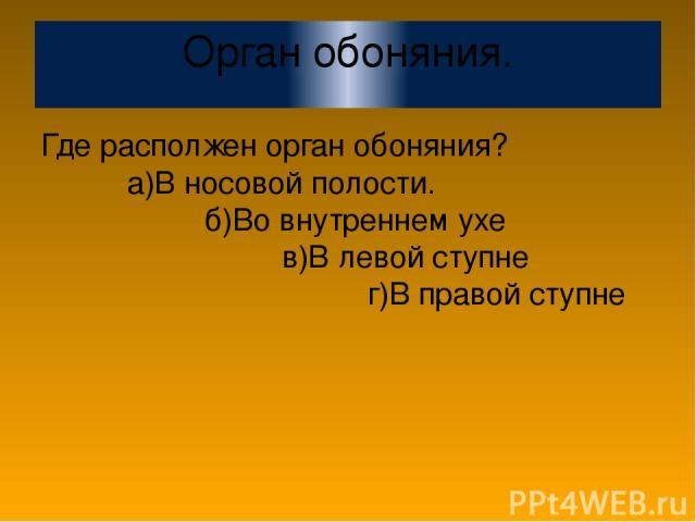 Орган обоняния. Где располжен орган обоняния? а)В носовой полости. б)Во внутреннем ухе в)В левой ступне г)В правой ступне