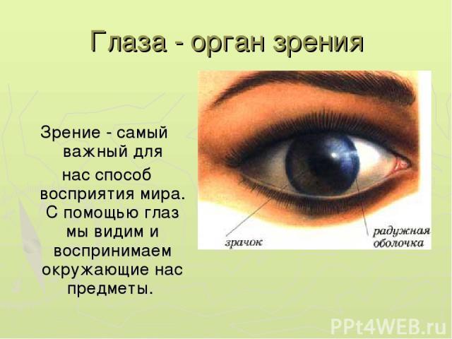 снова больничной наука о нарушении зрения красивые упругие