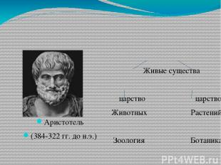 Аристотель (384-322 гг. до н.э.) Живые существа  царство царство Животных Расте