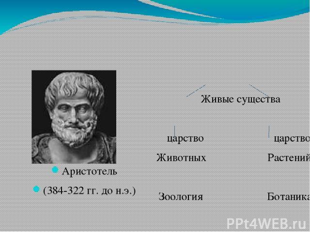 Аристотель (384-322 гг. до н.э.) Живые существа  царство царство Животных Растений Зоология Ботаника