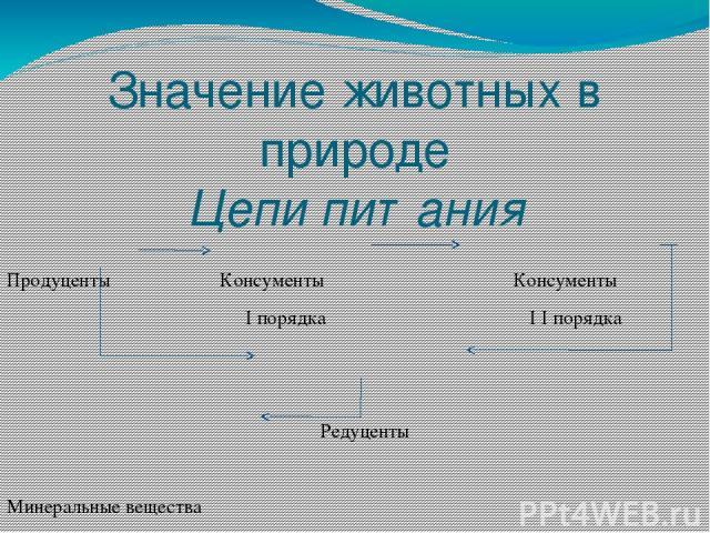 Значение животных в природе Цепи питания Продуценты Консументы Консументы I порядка I I порядка  Редуценты Минеральные вещества