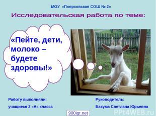 МОУ «Поярковская СОШ № 2» Работу выполняли: учащиеся 2 «А» класса Руководитель: