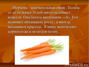 Морковь –замечательный овощ . Польза от ее большая .В ней много целебных веществ