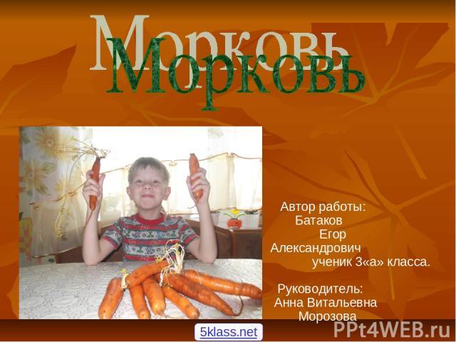 Автор работы: Батаков Егор Александрович ученик 3«а» класса. Руководитель: Анна Витальевна Морозова 5klass.net