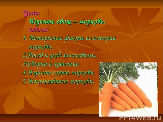 Цель: Изучить овощ – морковь. Задачи: 1. Интересные факты из истории моркови. 2.Посев и уход за посевами. 3.Уборка и хранение. 4.Изучить сорта моркови 5.Использавание моркови.