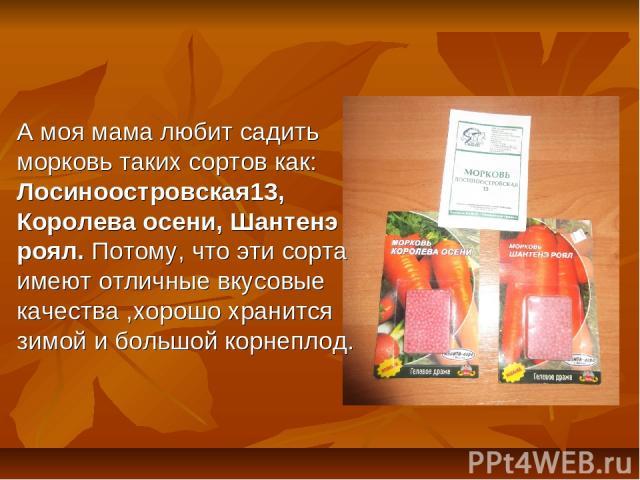 А моя мама любит садить морковь таких сортов как: Лосиноостровская13, Королева осени, Шантенэ роял. Потому, что эти сорта имеют отличные вкусовые качества ,хорошо хранится зимой и большой корнеплод.