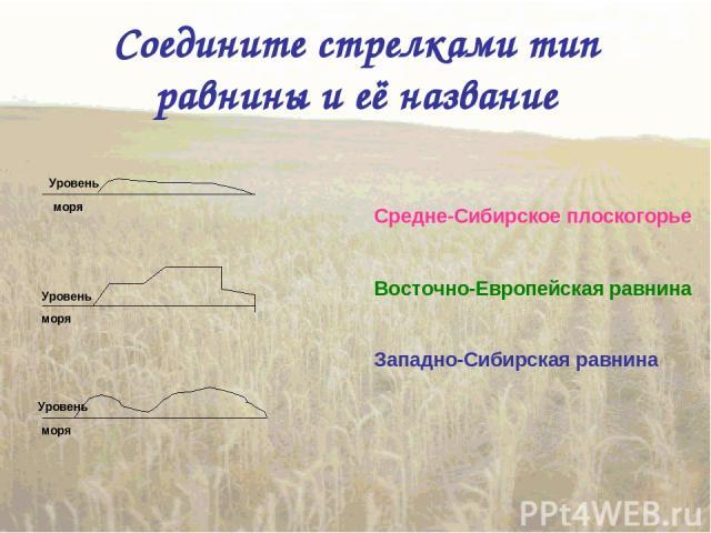 Соедините стрелками тип равнины и её название Восточно-Европейская равнина Западно-Сибирская равнина Средне-Сибирское плоскогорье Уровень моря Уровень моря Уровень моря