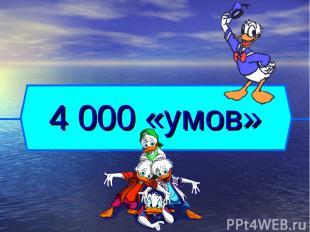 4 000 «умов»