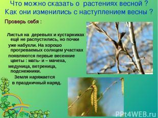 Что можно сказать о растениях весной ? Как они изменились с наступлением весны ?