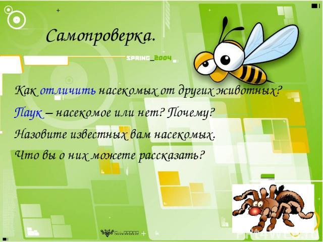 Самопроверка. Как отличить насекомых от других животных? Паук – насекомое или нет? Почему? Назовите известных вам насекомых. Что вы о них можете рассказать?