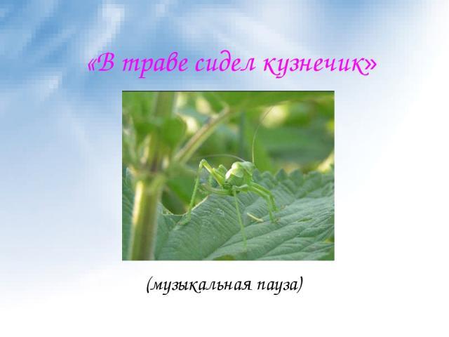 «В траве сидел кузнечик» (музыкальная пауза)
