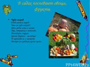 В садах поспевают овощи, фрукты Чудо-огород Удивляется народ: Что за чудо-огород