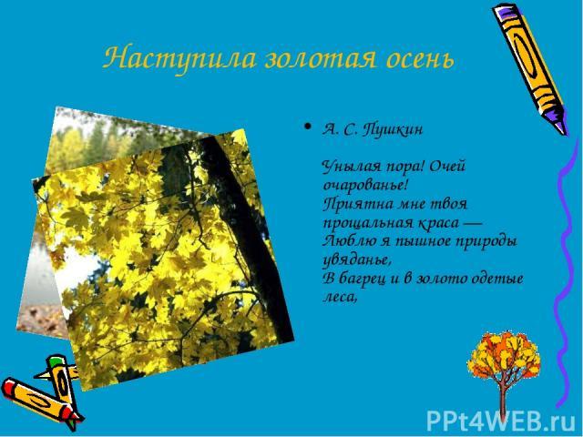 Наступила золотая осень А. С. Пушкин Унылая пора! Очей очарованье! Приятна мне твоя прощальная краса — Люблю я пышное природы увяданье, В багрец и в золото одетые леса,