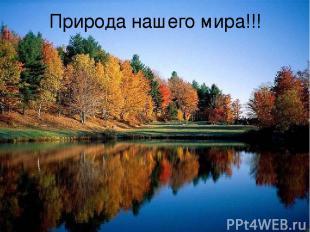 Природа нашего мира!!!