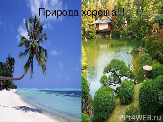 Природа хороша!!!