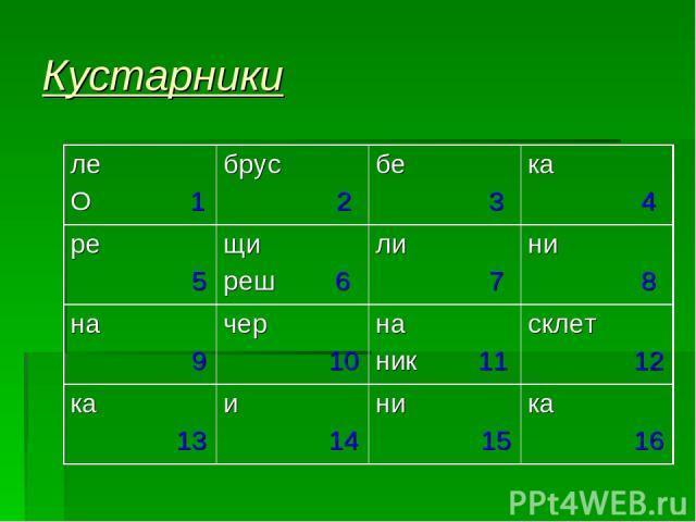 Кустарники ле О 1 брус 2 бе 3 ка 4 ре 5 щи реш 6 ли 7 ни 8 на 9 чер 10 на ник 11 склет 12 ка 13 и 14 ни 15 ка 16